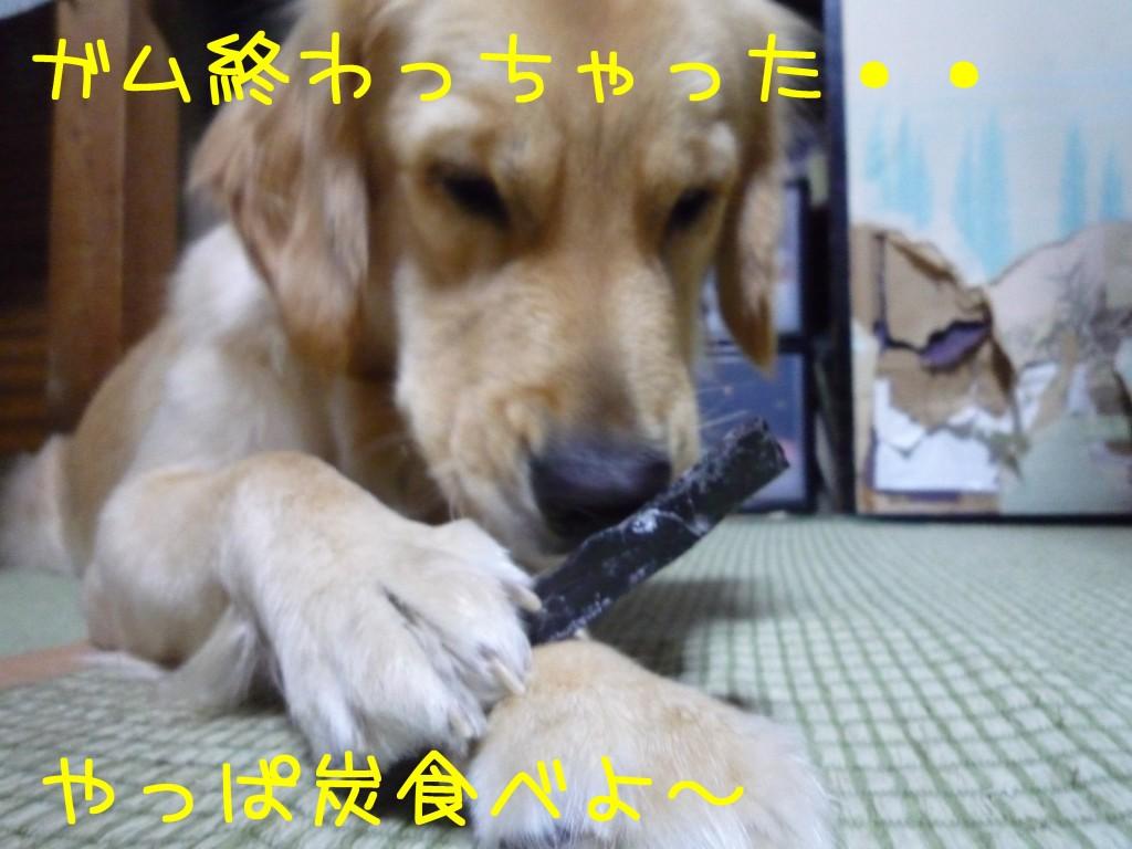 261 1024x768 備長炭 sumi eater   keyaki★