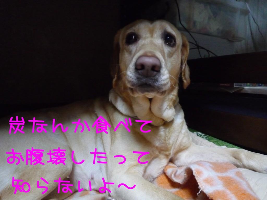 262 1024x768 備長炭 sumi eater   keyaki★