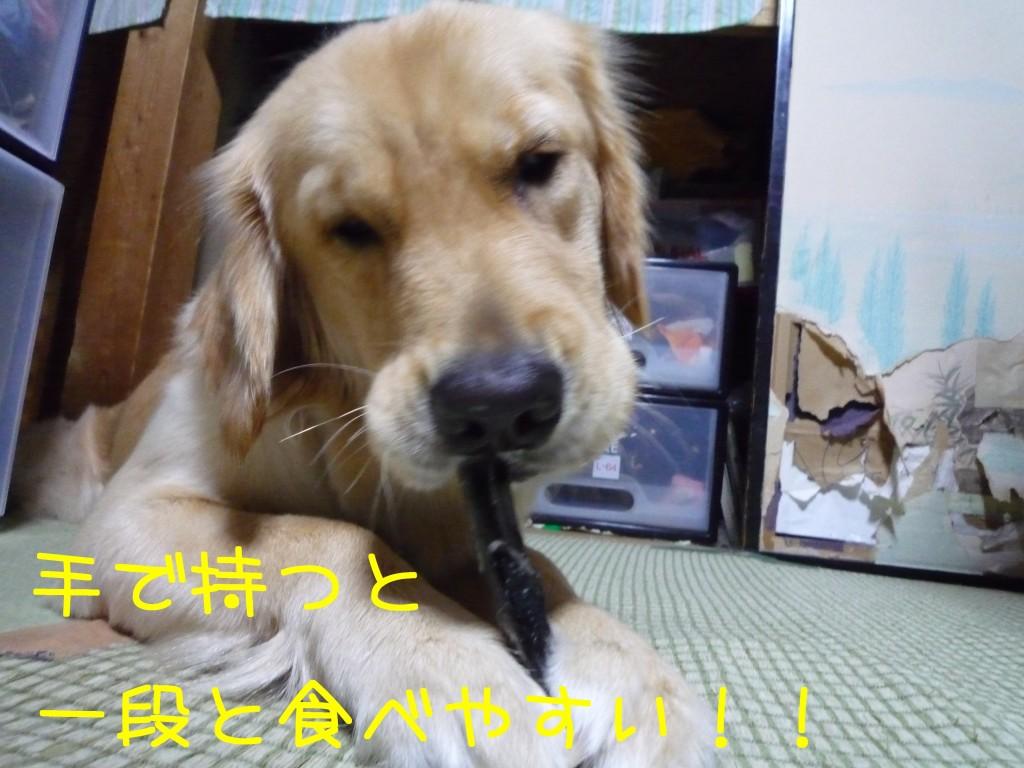 267 1024x768 備長炭 sumi eater   keyaki★