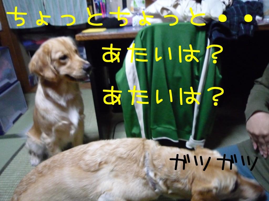 298 1024x768 長女 大阪から帰省!!