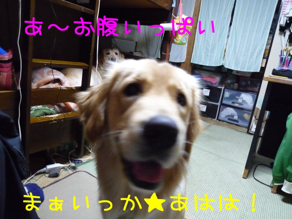 302 1024x768 長女 大阪から帰省!!